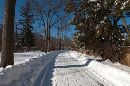 Back Path