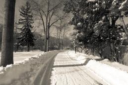 The Path - B&W